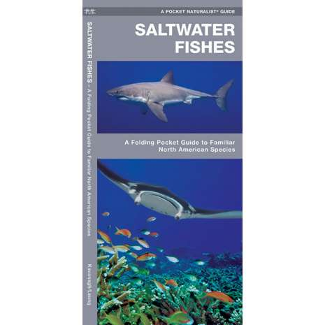 Books for Aquarium Gift Shops :Saltwater Fishes