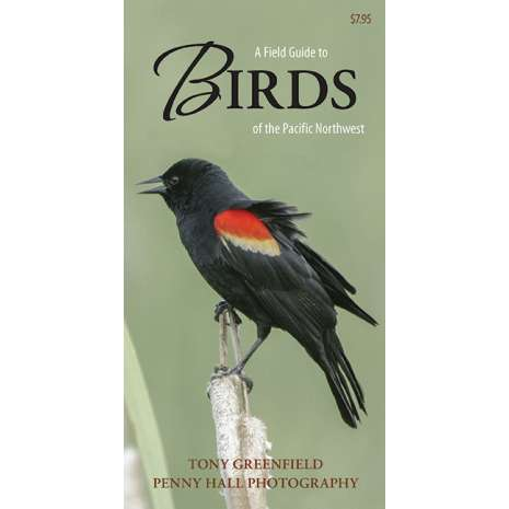 Bird Identification Guides :A Field Guide to Birds of the Pacific Northwest (Folding Pocket Guide)