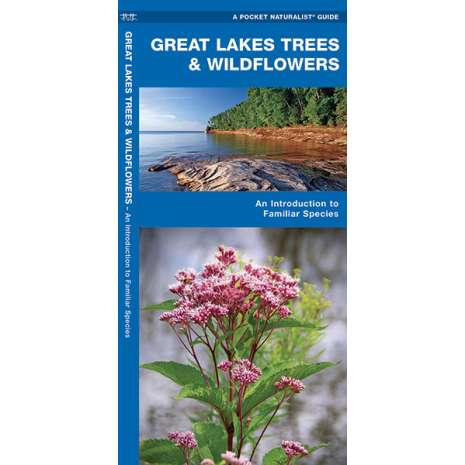Tree, Plant & Flower Identification Guides :Great Lakes Trees & Wildflowers