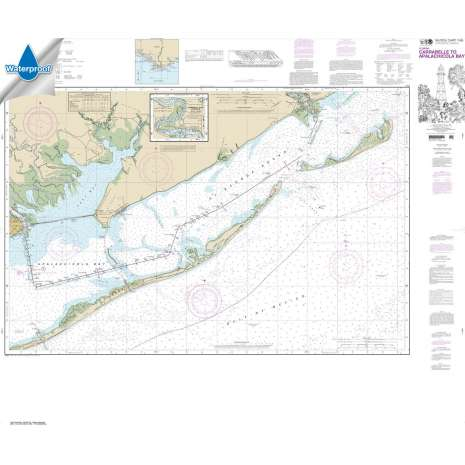 Waterproof NOAA Charts :Waterproof NOAA Chart 11404: Intracoastal Waterway Carrabelle to Apalachicola Bay;Carrabelle River