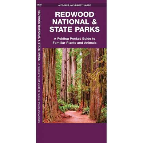 California :Redwood National & State Parks