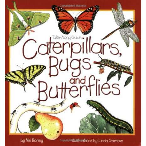 Children's Outdoors, Take-Along Guides: Caterpillars, Bugs and Butterflies