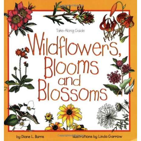 Children's Outdoors :Take Along Guides: Wildflowers, Blooms & Blossoms
