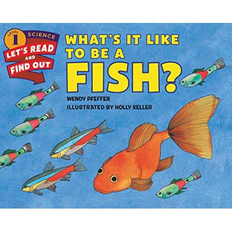 Fish, Sealife, Aquatic Creatures :What's It Like to Be a Fish?