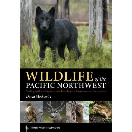 Reptile & Mammal Identification Guides :Wildlife of the Pacific Northwest: Tracking and Identifying Mammals, Birds, Reptiles, Amphibians, and Invertebrates