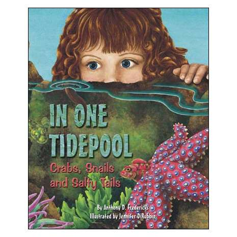 Ocean & Seashore :In One Tidepool: Crabs, Snails and Salty Tails