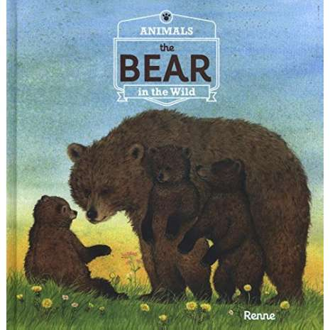 Bears :Animals in the Wild: The Bear