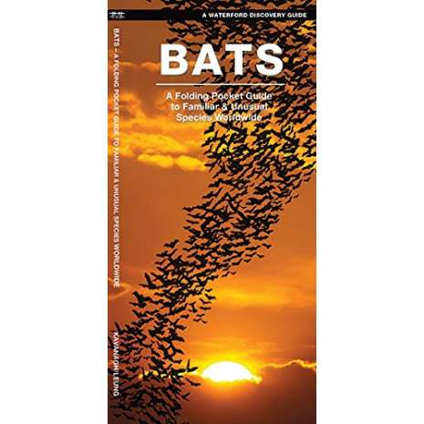 Reptile & Mammal Identification Guides :Bats: A Folding Pocket Guide to the Status of Familiar Species