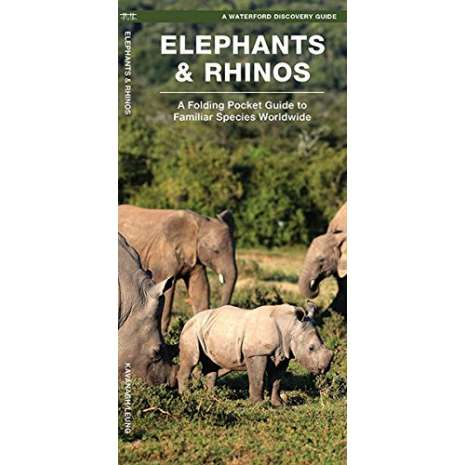 Reptile & Mammal Identification Guides :Elephants & Rhinos: A Folding Pocket Guide to the Status of Familiar Species