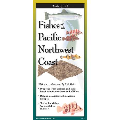 Fish & Sealife Identification Guides :Fishes of The Pacific Northwest Coast