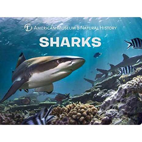 Sharks, Sharks (Science for Toddlers)