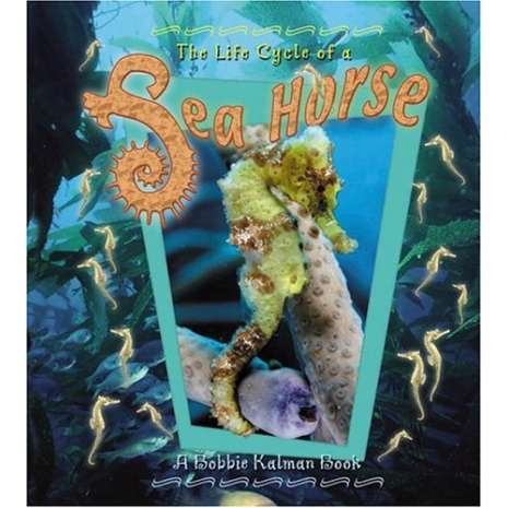 Aquarium Gift Shops, The Life Cycle of a Sea Horse