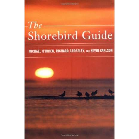 Birds :The Shorebird Guide
