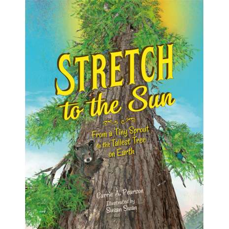 Environment & Nature :Stretch to the Sun: From a Tiny Sprout to the Tallest Tree on Earth