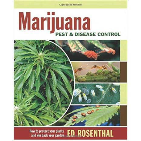 Humboldt County, Marijuana Pest and Disease Control: How to Protect Your Plants and Win Back Your Garden