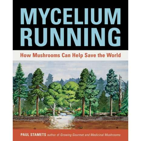 Nature & Ecology :Mycelium Running: How Mushrooms Can Help Save the World