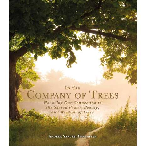Conservation & Awareness, In the Company of Trees: Honoring Our Connection to the Sacred Power, Beauty, and Wisdom of Trees