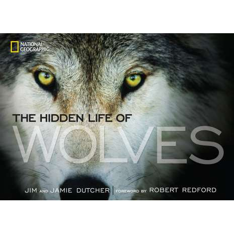 Animals :The Hidden Life of Wolves