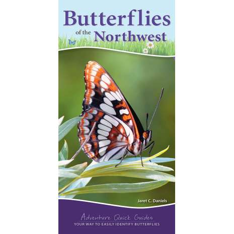 Insect Identification Guides :Butterflies of the Northwest: Your Way to Easily Identify Butterflies