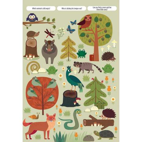 Interactive Books :Find Me! Adventures in the Forest
