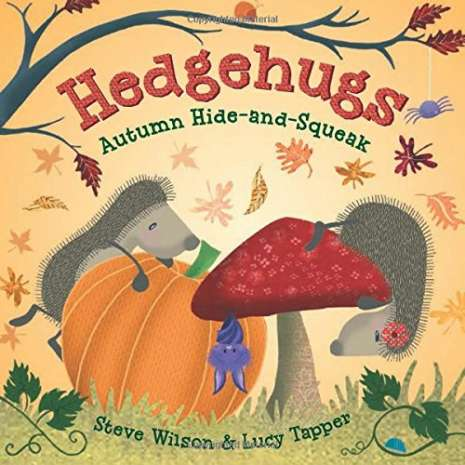 Board Books: Zoo :Hedgehugs: Autumn Hide-and-Squeak