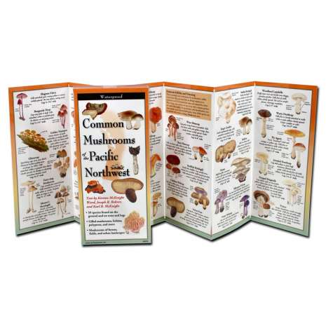 Mushroom Identification Guides :Common Mushrooms of the Pacific Northwest (Folding Guide)