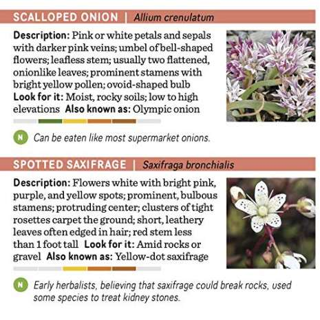 Tree, Plant & Flower Identification Guides :Pacific Northwest Wildflowers: A Pocket Reference