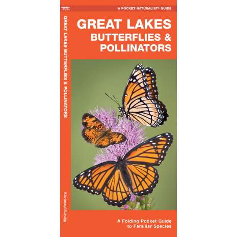 Insect Identification Guides :Great Lakes Butterflies & Moths