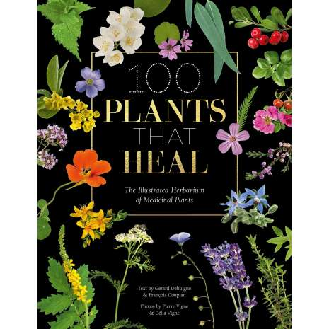Foraging :100 Plants that Heal: The illustrated herbarium of medicinal plants
