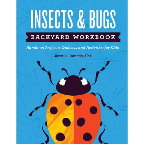 Butterflies, Bugs & Spiders :Insects & Bugs Backyard Workbook: Hands-on Projects, Quizzes, and Activities for Kids