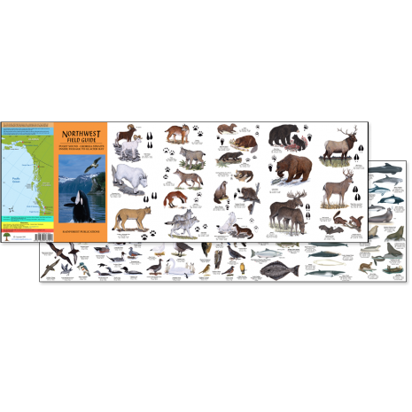 Pacific Northwest Field Guides :Northwest Field Guide (Folding Pocket Guide)