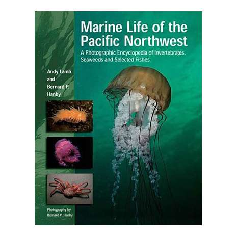Books for Aquarium Gift Shops :Marine Life of Pacific Northwest