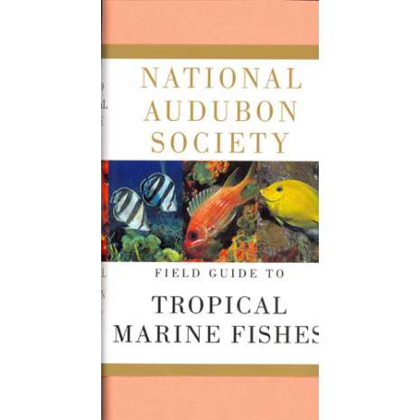 Books for Aquarium Gift Shops :Audubon Field Guide to Tropical Marine Fishes