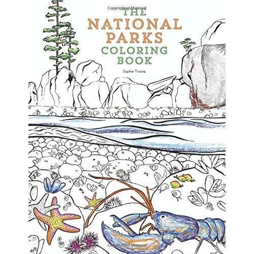 Gift Shop Books :: Children's Books :: Coloring Books :: The National Parks Coloring  Book - Paracay.com Wholesale Books