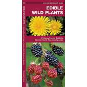 Tree, Plant & Flower Identification Guides :Edible Wild Plants