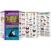 Washington State Wildlife  (Folding Pocket Guide)