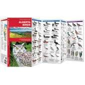 Alberta Birds (Folding Pocket Guide)