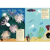 My Nature Sticker Activity Book: At the Seashore