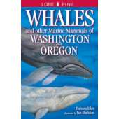 Fish & Sealife Identification Guides :Whales and Other Marine Mammals of Washington and Oregon