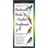 Bird Identification Guides :Sibley's Backyard Birds of Pacific Northwest