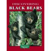 Bears :Discovering Black Bears