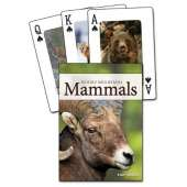 Playing Cards :Mammals of the Rocky Mountains Playing Cards