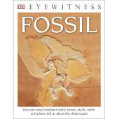 Dinosaurs, Fossils, Rocks & Geology :DK Eyewitness Books: Fossil