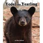 Bears :Yodel the Yearling