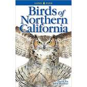 Birding :Birds of Northern California 2nd ed. Edition