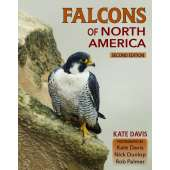 Birding :Falcons of North America