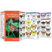 Insect Identification Guides :Butterflies & Pollinators: A Folding Pocket Guide to Familiar Species