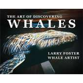 Marine Mammals :The Art of Discovering Whales