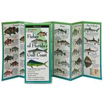 Aquarium Gift Shops, Fishes of Florida's Gulf Coast (Folding Guides)