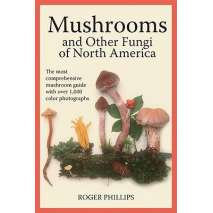 Mushroom Identification Guides, Mushrooms and Other Fungi of North America